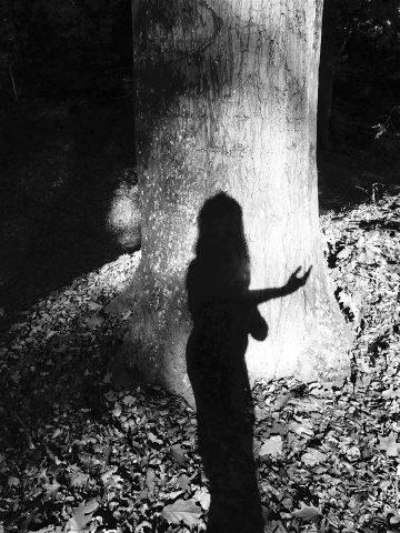 Tree of Wonder 3   Noir (2018)